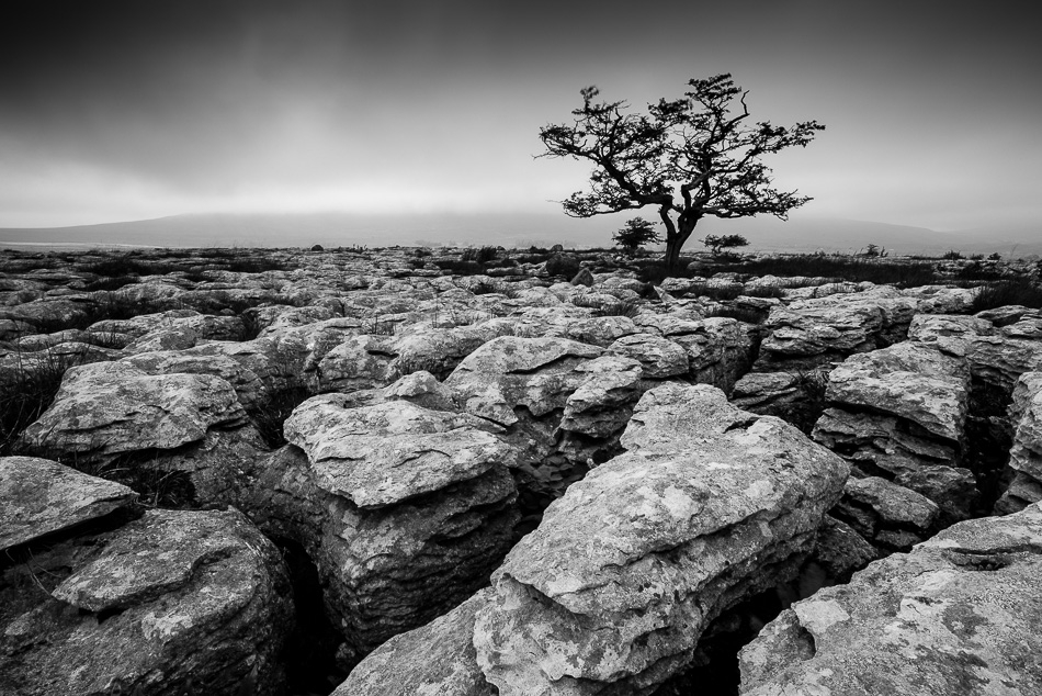 Roberts images yorkshire dales