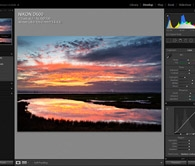 Introduction to Adobe Lightroom (Elmley NNR) Photography Workshop