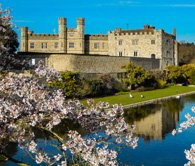 Leeds Castle: Spring Photo Walk Photography Workshop