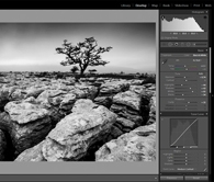 One to One: Introduction to Adobe Lightroom Photography Workshop