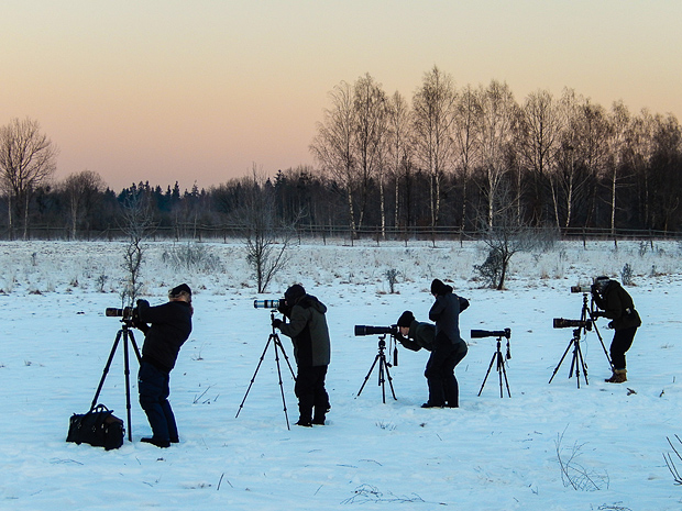 Workshop participants photographing bison on our first day.