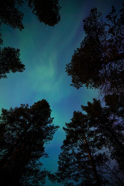 Aurora Borealis - Smiles And Kisses