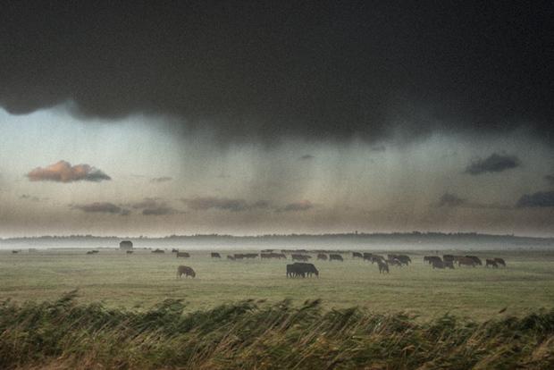 Rain sweeping across Elmley Nature Reserve